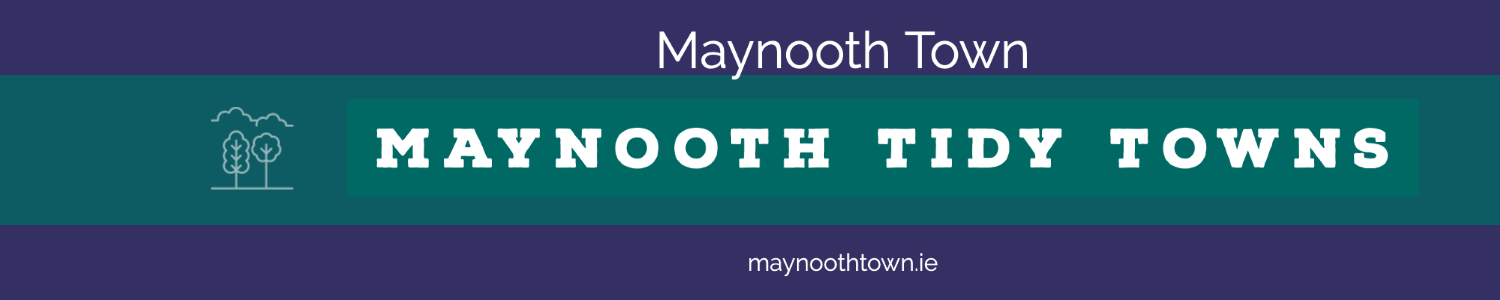 Maynooth Tidy Towns